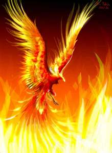 Phoenix arising from the Ashes