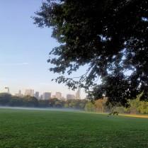 Foggy Misty Morn