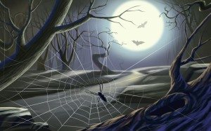Spider web moon lit night