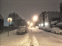 Juno Snowstorm Bed-Stuy/Brownsville, Brooklyn