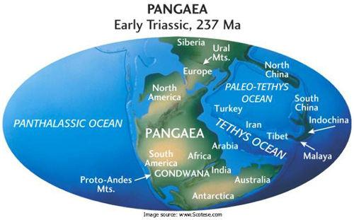 Pangaea_KarlE_Limper Geology Museum