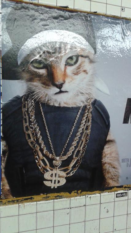 Hip Hop Kitty Cat Espiritu En Fuegoa Fiery Spirit