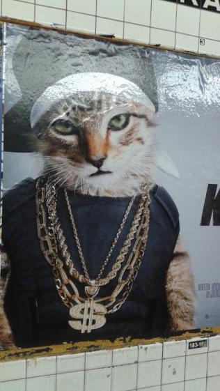 Hip_Hop_Cat