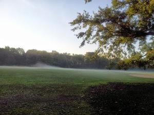 Misty Foggy Morn