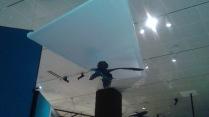 Dino Bird flying high