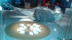 Dino Chicken Eggs