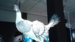 Dino Mega Chicken