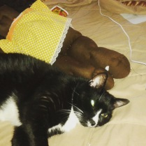 sylvester-and-friend