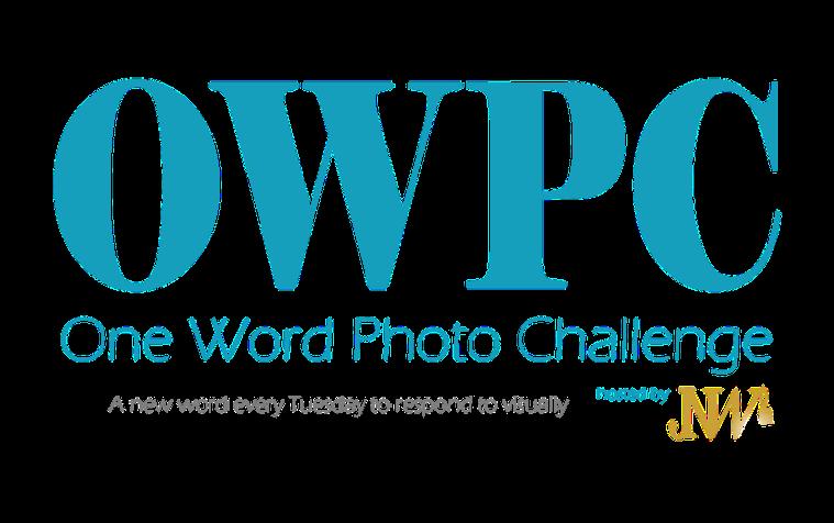 owpc logo 2