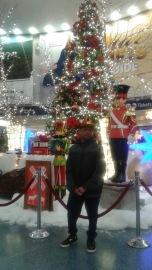 Stephen posing by Christmas Tree
