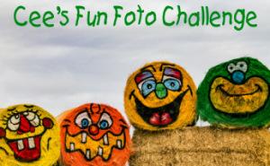 Cee's Fun Foto Challenge
